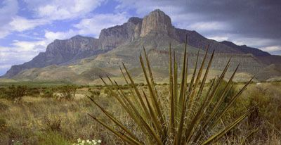 Guadalupae Mountains